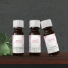 at your desk essential oils gift pack